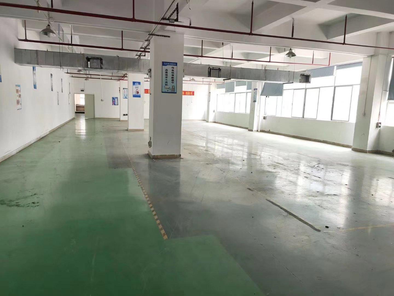 石岩水田德政路边新出楼上整层精装修2255平方厂房出租可分租-图9