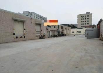 石岩塘头松柏路边楼上独院单一层钢构3550平方物流仓库出租图片2