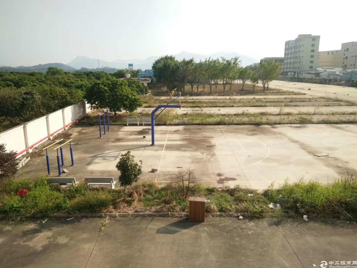 惠州陈江镇新出带10吨航吊单一层钢构厂房3560平