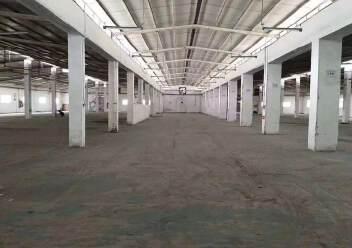 石岩塘头松柏路边楼上独院单一层钢构3550平方物流仓库出租图片1