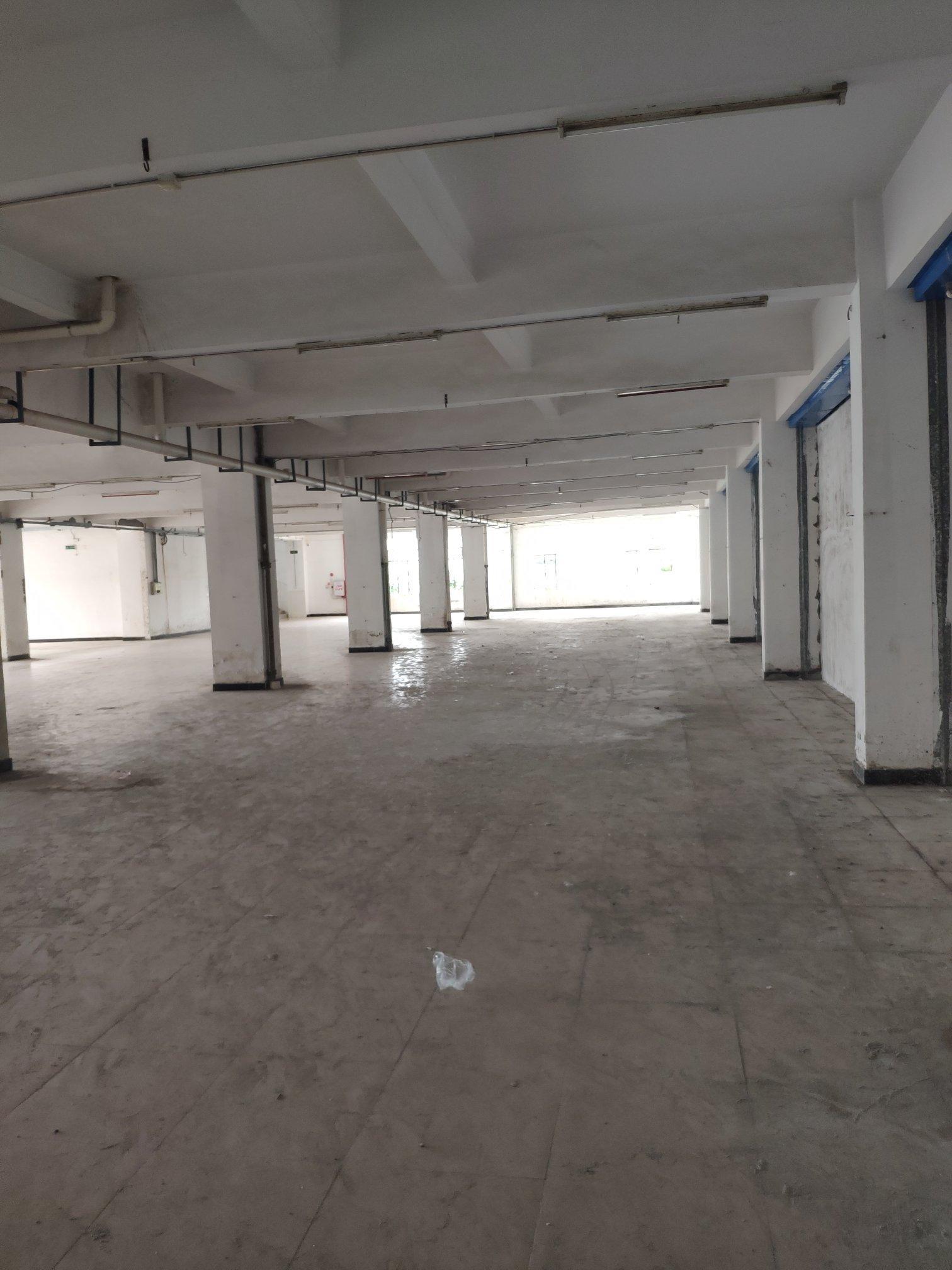 道滘带卸货平台仓库出租