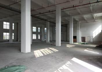 龙华新出独栋原房东厂房一楼层高8米,有消防喷淋适合仓库图片4
