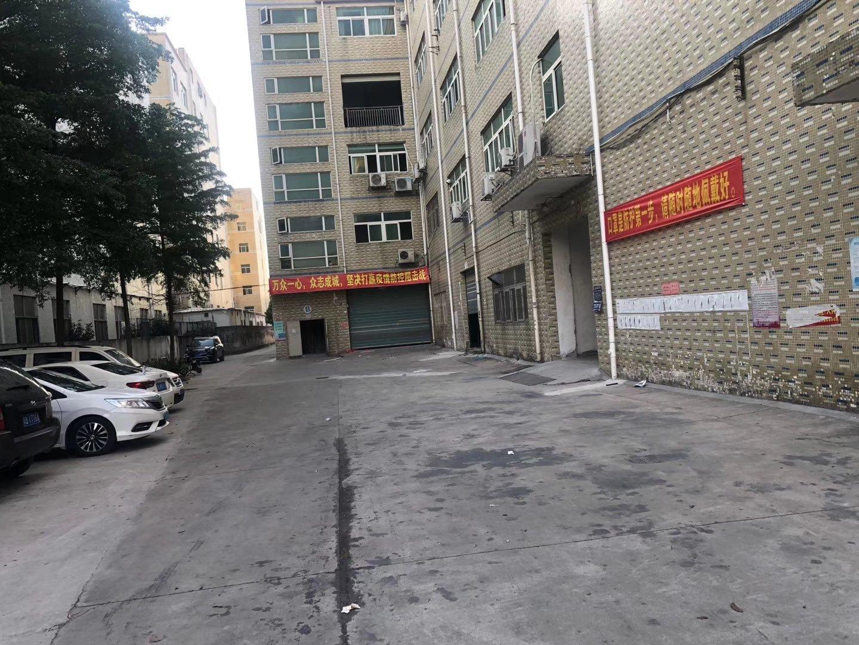 惠阳平潭1楼厂房空地大出租1100平