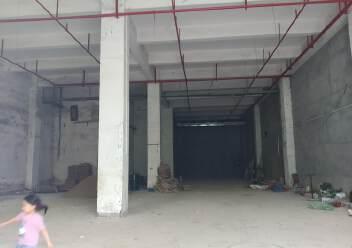 龙华新出独栋原房东厂房一楼层高8米,有消防喷淋适合仓库图片5