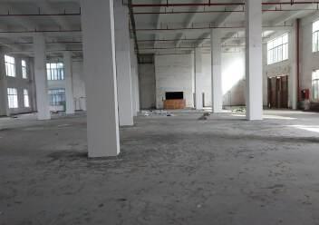 龙华新出独栋原房东厂房一楼层高8米,有消防喷淋适合仓库图片2