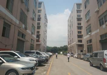 观澜章阁原房东厂房楼上1500平出租,一部三吨货梯图片3