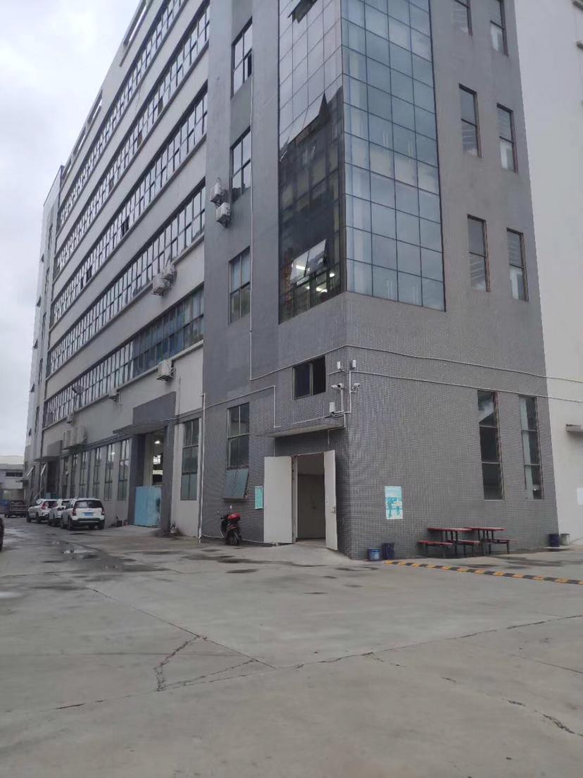 泰美镇新出标准厂房一楼2165平,可办环评,办公室精装修