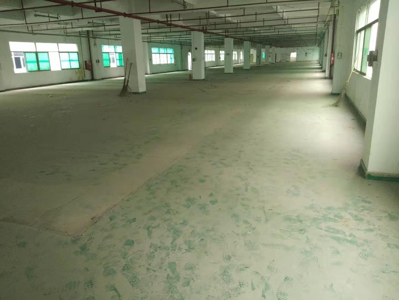 惠州市博罗县龙溪镇新出原房东标准厂房5600平米分租