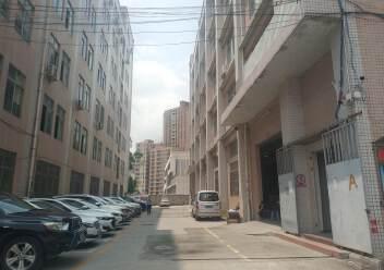 观澜章阁原房东厂房楼上1500平出租,一部三吨货梯图片2