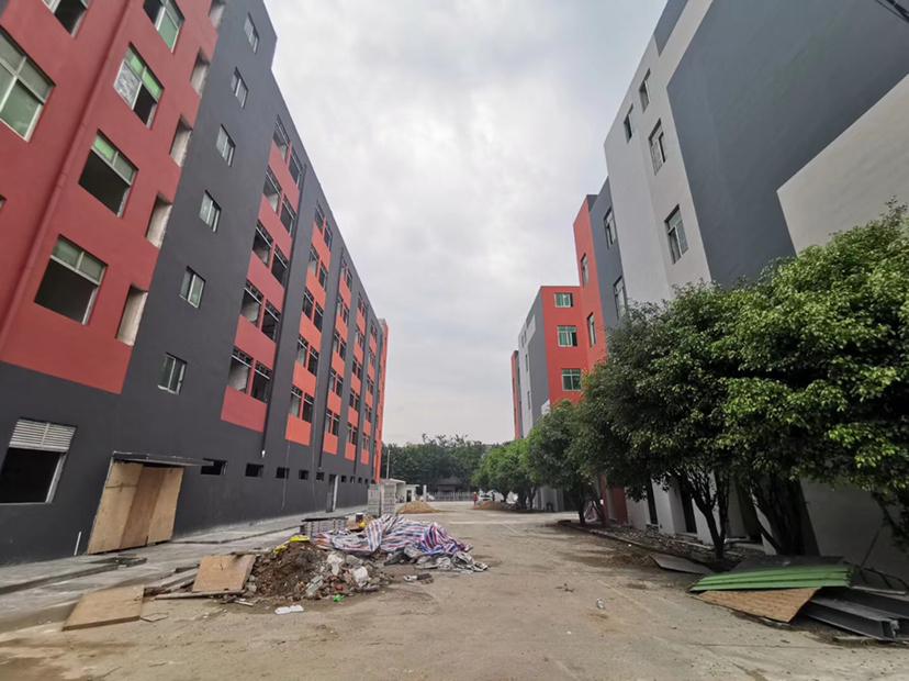 黄埔东区一楼3000平原房东万博app官方下载低价出租可办环评可分租