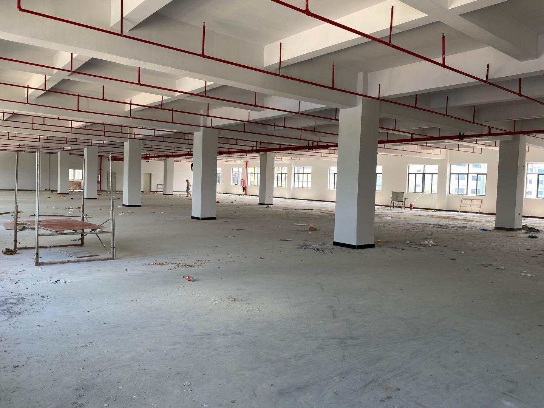 惠阳镇隆高田原房东红本标准厂房楼上2000平