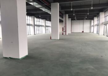 凤岗镇汽车站旁写字楼8000平,可分租100-1500带装修图片4