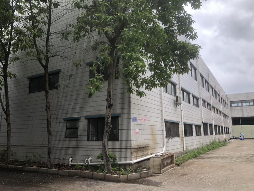 惠州市惠阳区镇隆镇单一层钢构厂房出租