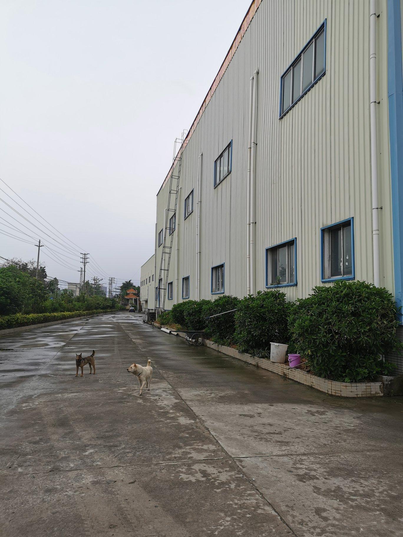 博罗新出原房东独院单一层砖墙到顶厂房2200平方