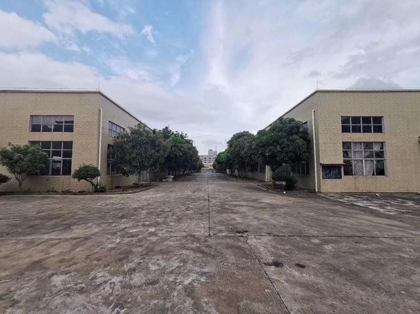 中山市西区国有证红本单一层厂房可以做物流92114平方