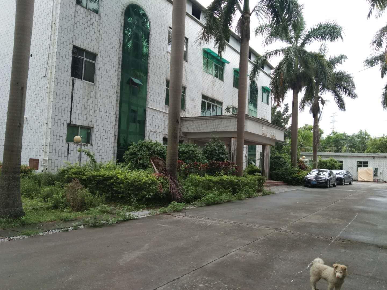 博罗县长宁镇324国道边新出花园式标准独院厂房证件齐全