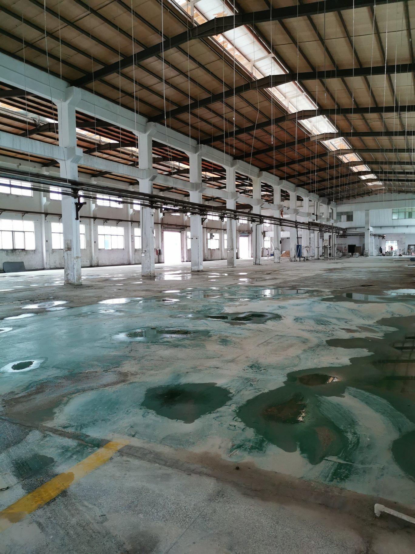 博罗新出工业区原房东花园式单一层厂房12000平方