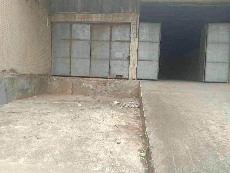 道滘带卸货平台仓库