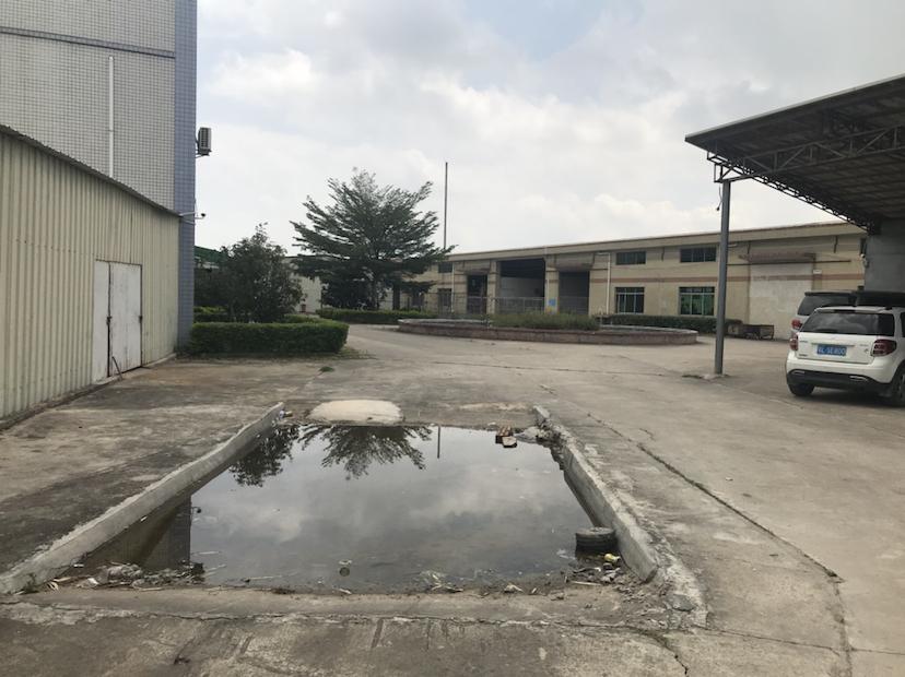 三栋原房东5000平标准钢构厂房招商