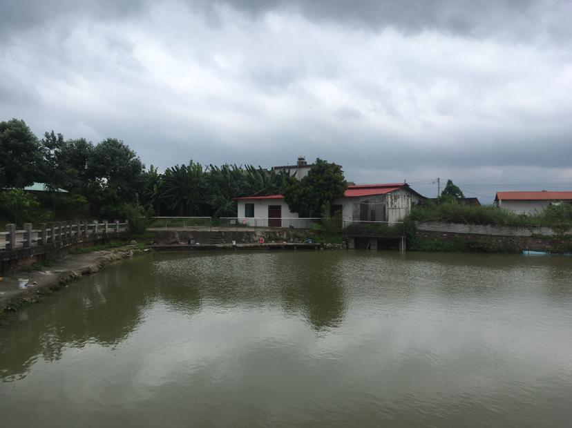 仲恺高新区工矿用地超大面积240亩地可做农庄旅游文体