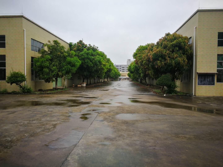 新圩镇东风红本钢构厂房15000平米