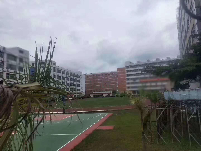 松岗现成学校46000平带球场空地超大有红本合同15年
