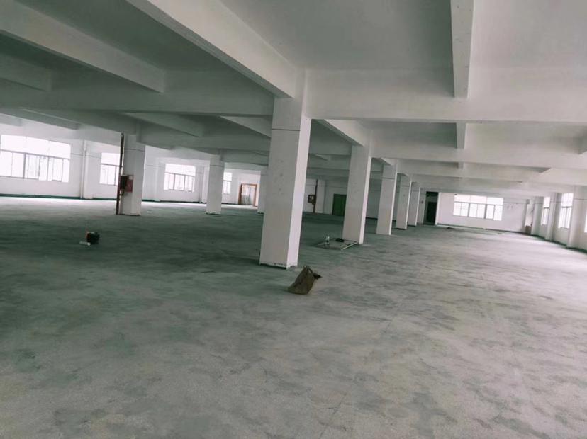 龙岗坪地一楼1275平高5米原房東独院红本厂房仓库出租精装修