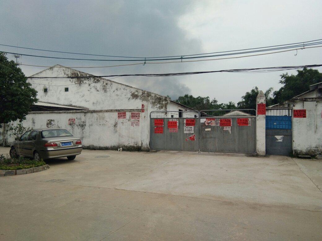 旧厂房出租滴水七米高原房东自建本地原房东
