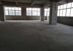 笋盘,宝安沙井6100㎡两层厂房