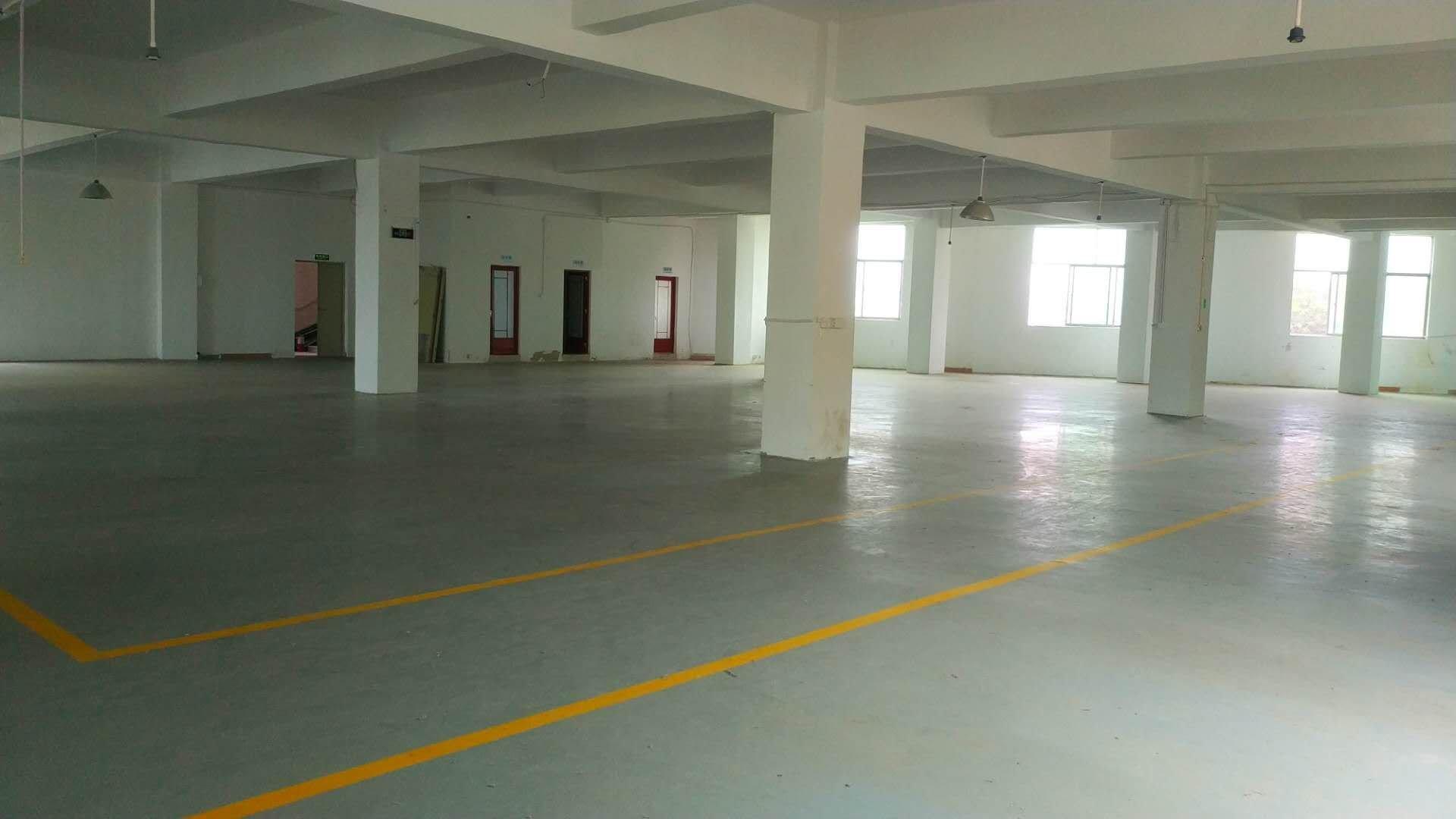 龙岗宝龙工业区楼上带装修厂房1600平米水电齐全龙岗电商仓库