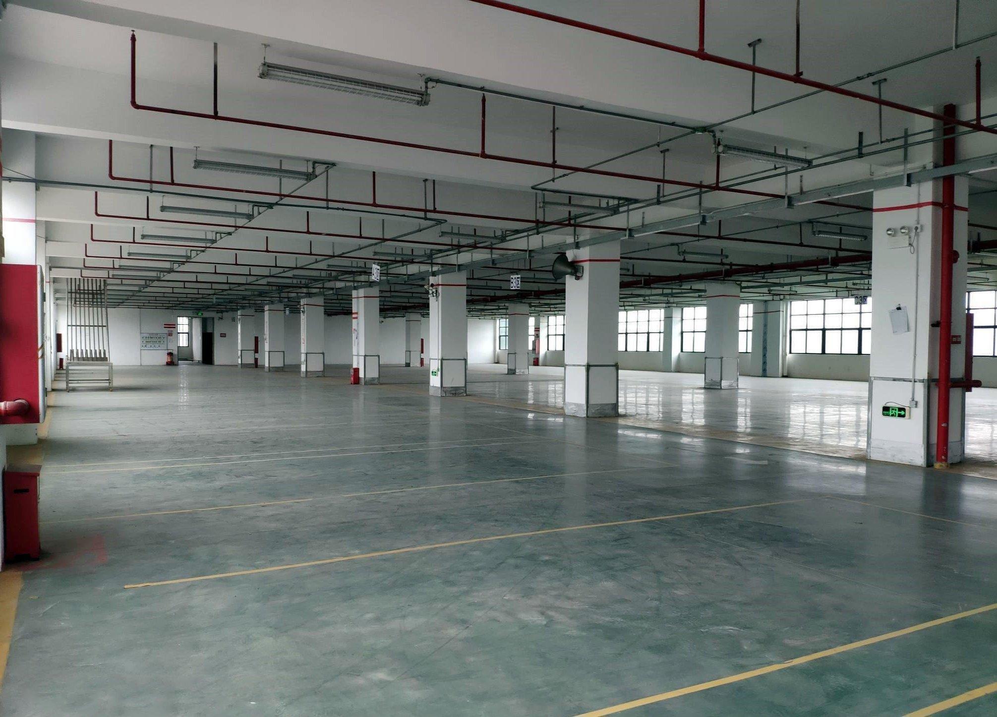 带喷淋消防,番禺区石楼镇工业区新建8000方标准万博app官方下载出租