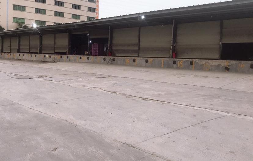 东莞沙田国有证工业用地300亩出租,房东包报建好做物流仓储