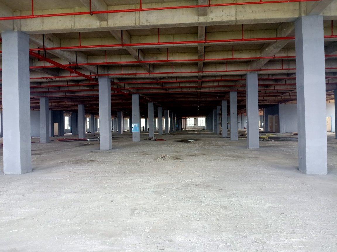 望城区24000平标准厂房出租-图5