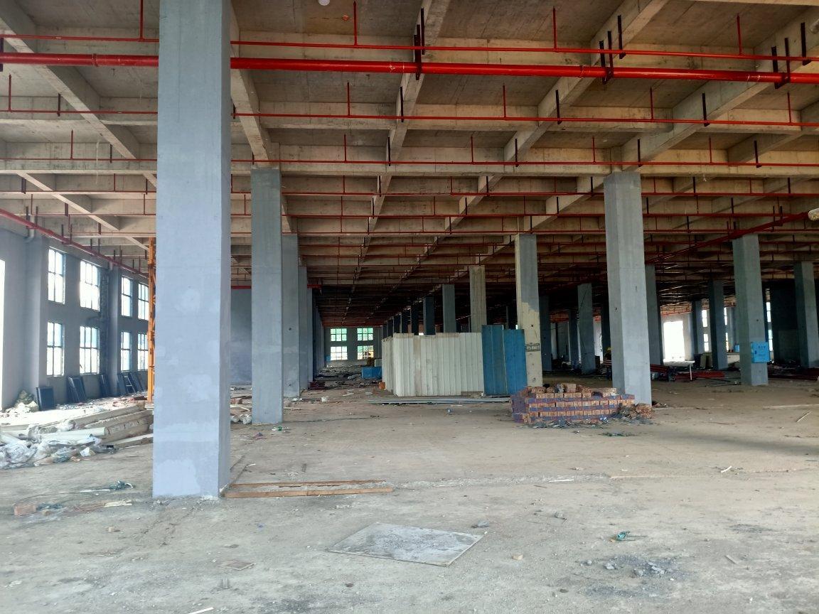 望城区24000平标准厂房出租-图2