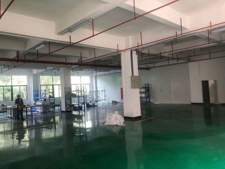常平镇新出独院三楼750平方带地坪漆办公室水电装修出租