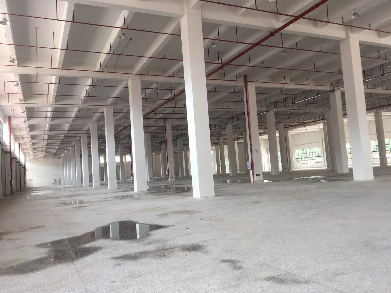 东城新出物流仓全新标准物流仓共3层:30600平方