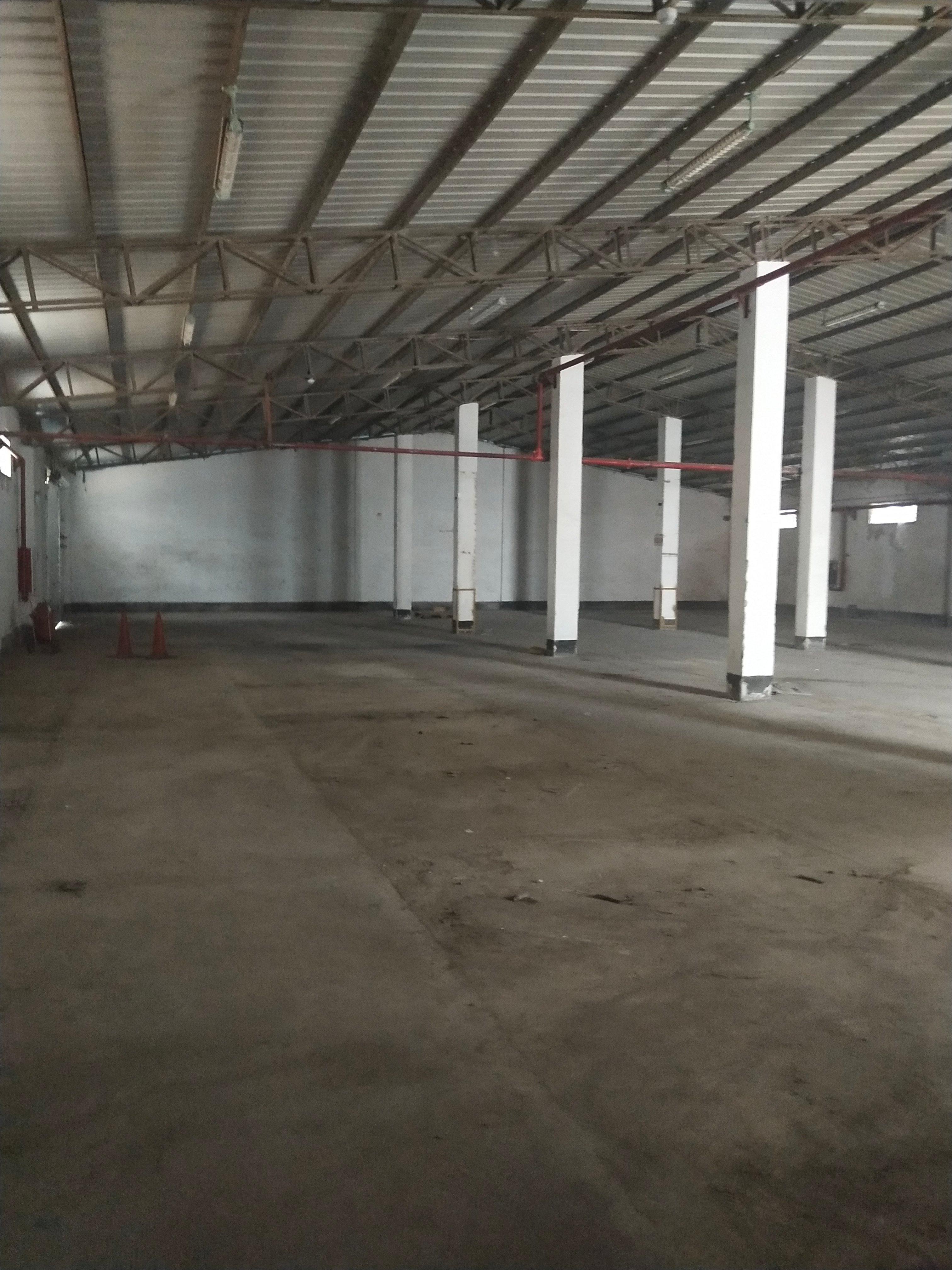 布吉南岭附近1000平单一层钢构万博app官方下载出租