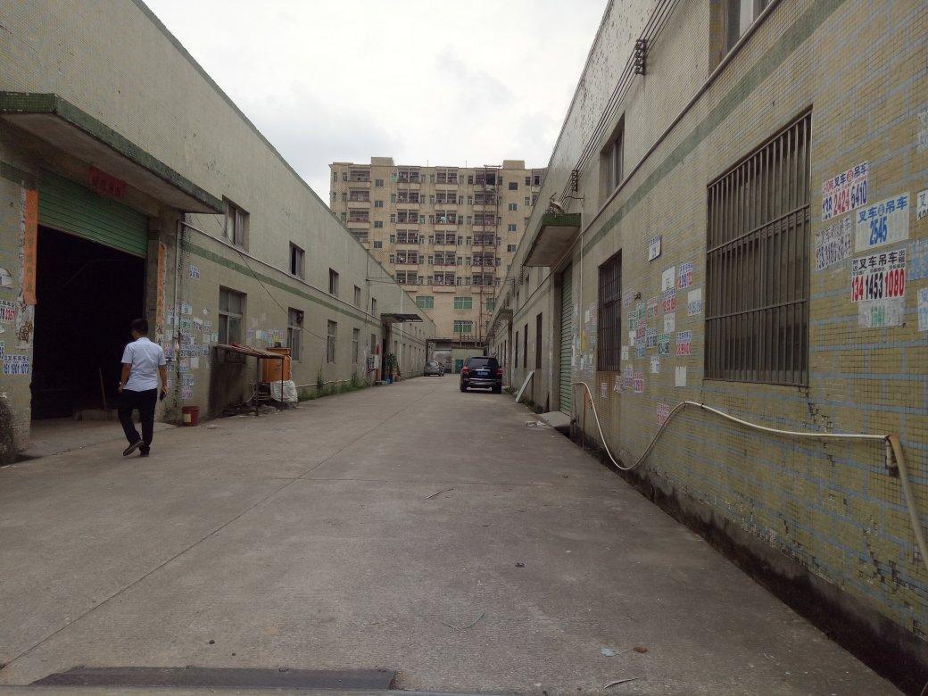 (原房东)惠阳秋长新塘独栋滴水6米钢构620平方厂房出租