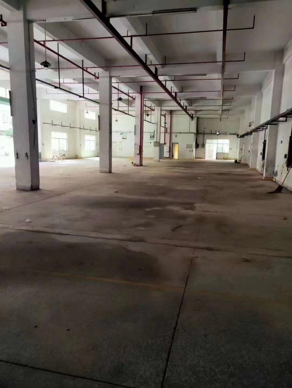惠州河南岸独门独院标准厂房带消防喷淋1-5F5000平