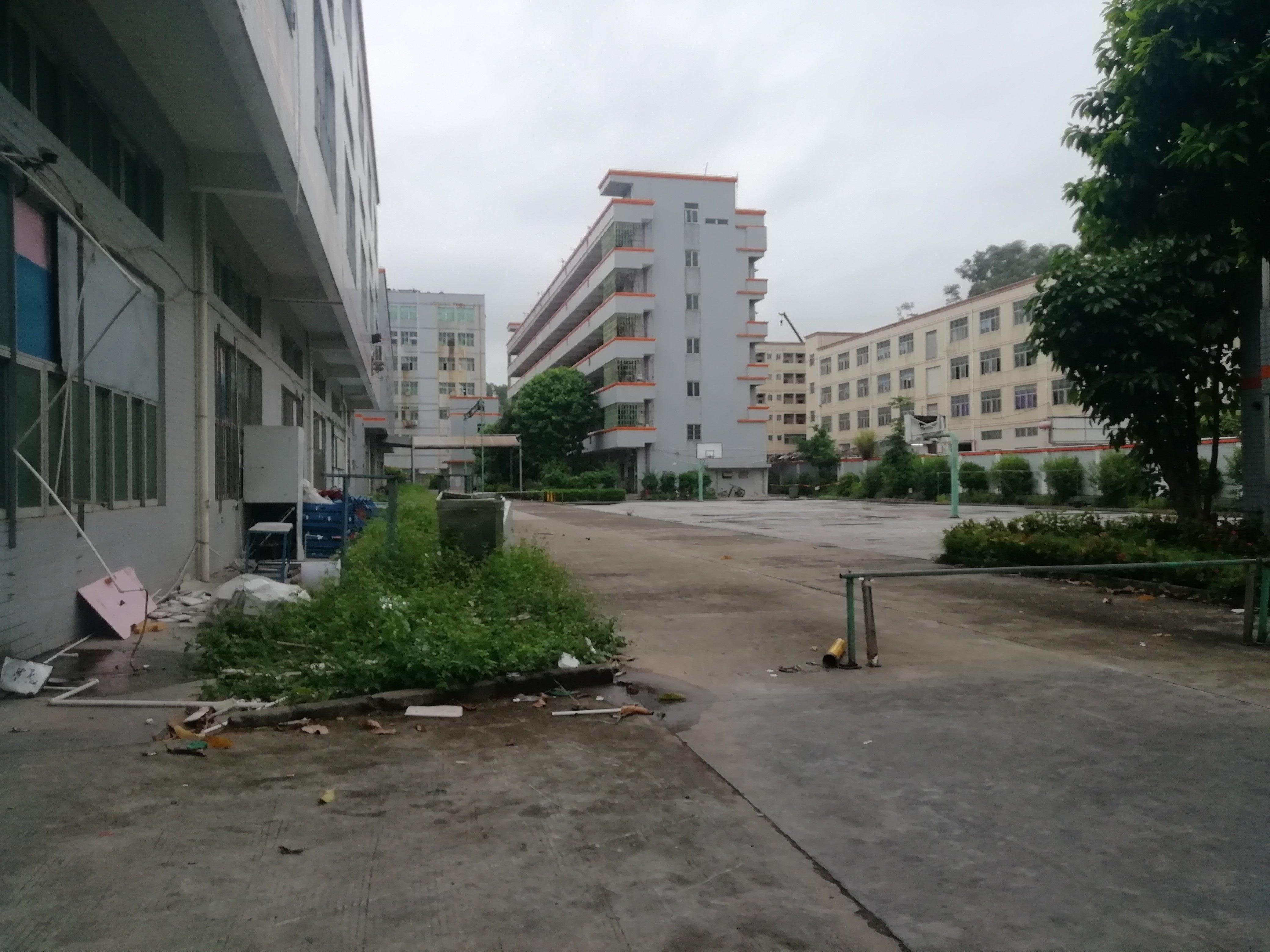 观澜松元新出原房东红本厂房1185平米出售,欢迎来电咨询。