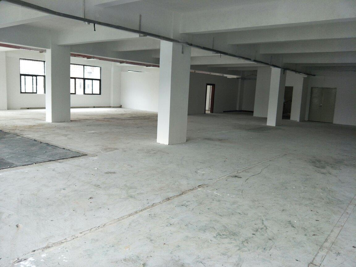 深圳龙岗布吉布澜路新出楼上560平园区空地大高速路口出租