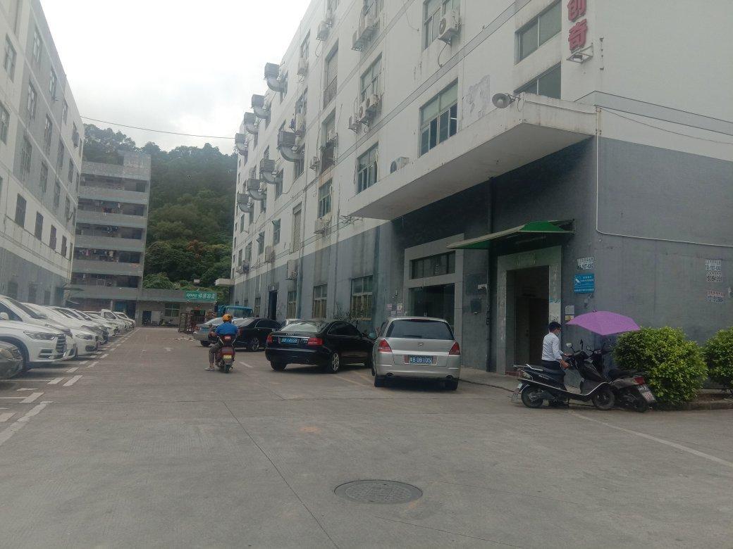 石岩外环路附近新出一楼原房东红本万博app官方下载1750平方出租