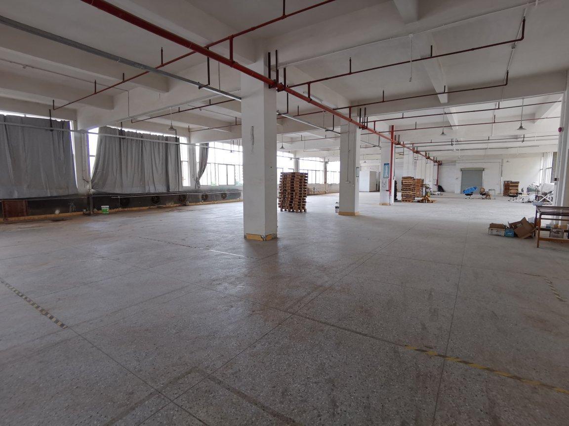 惠阳秋长原房东二楼1450平实际面积出租可办环评带现成装修