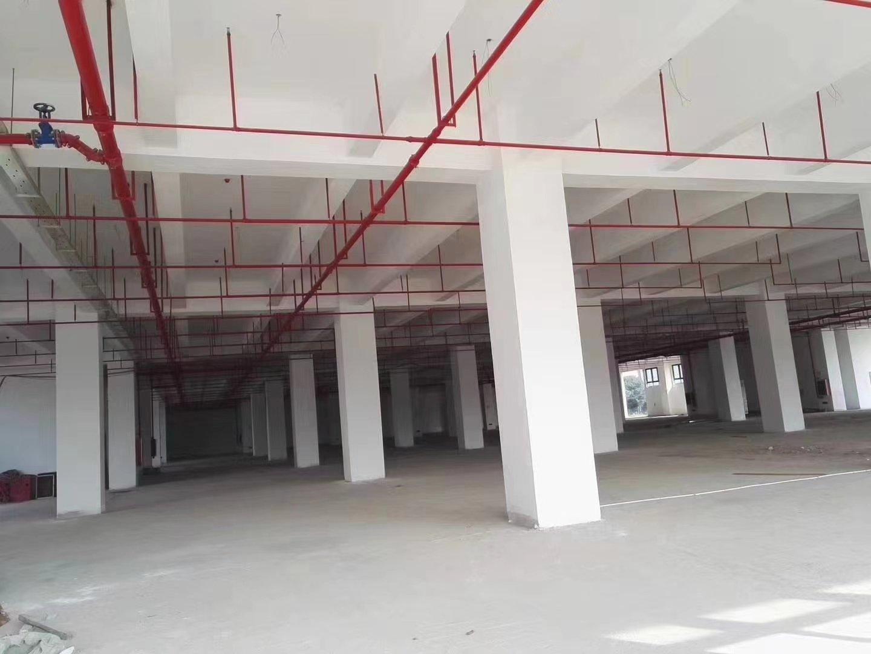 广州番禺南村成熟工业区新出独栋仓库出售
