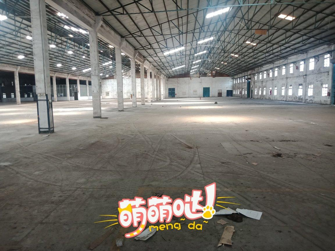 博罗龙溪镇5000平方钢结构带卸货平台