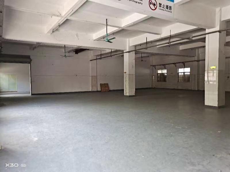 仲恺高新区沥林镇原房东厂房出租空地免费使用