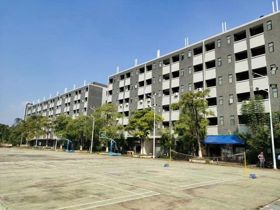 高明区杨和镇新家具福音万博app官方下载有现成家具环评和喷油。