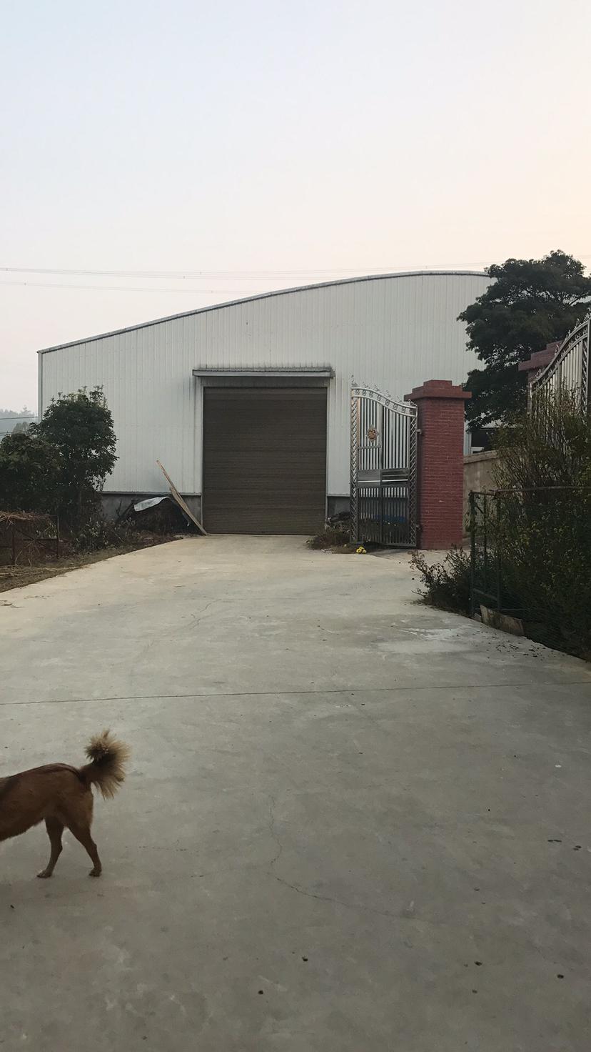 长沙市开福区沙坪街道500平方厂房、仓库出租,价格12块,