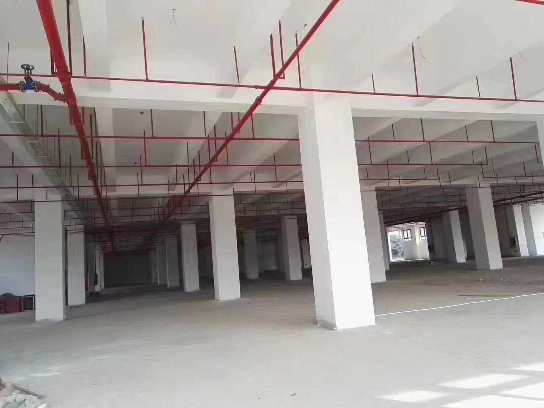 广州花都占地3038平建筑7351平国有双证独门独院厂房出售-图3