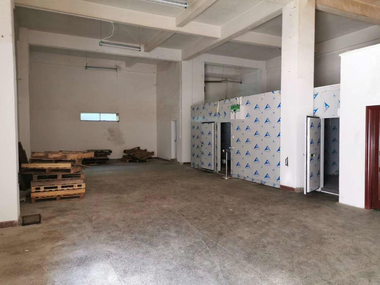 横岗横坪公路工业区新出一楼260平,适合冷冻仓库、加工生产等